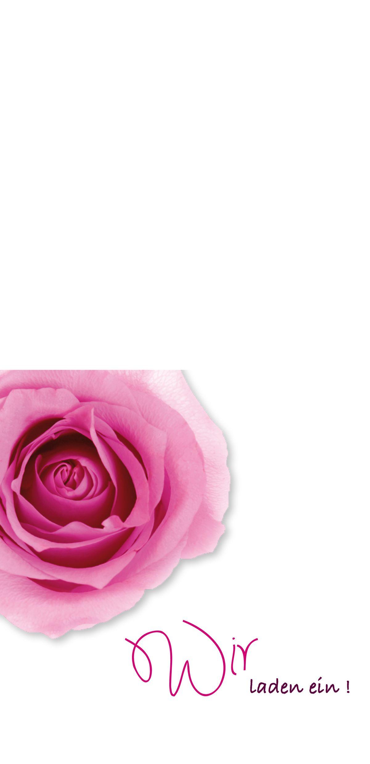Fächer einsteck kuverts rosen erblühen